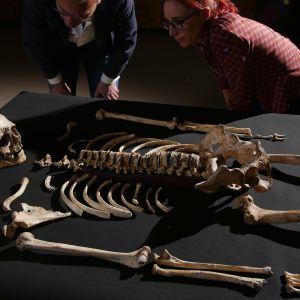 Britannian vanhin, kokonainen ihmisfossiili saa kasvot.
