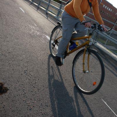 Cyklist på landsvägen