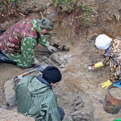 Venäläiset kaivavat Talvisodassa kaatuneiden venäläisten jäänteitä.