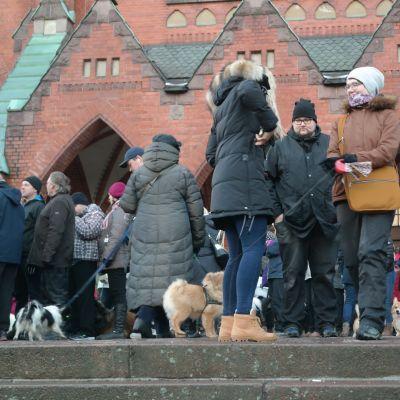 Folksamling vid Mikaelskyrkan vid djurens julfred