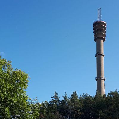 Svalberga torn i Åbo.