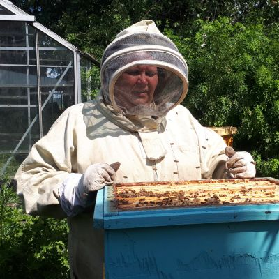Outi Koskinen mehiläispesällään