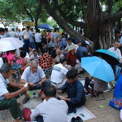 En park där kinesiska pensionärer sitter och spelar kort och umgås. En del har parasoll eller små pallar, en del sitter på marken. Ett stort träd finns i höger sida av bilden. I förgrunden fyra män som spelar kort och en dam i röd hatt.