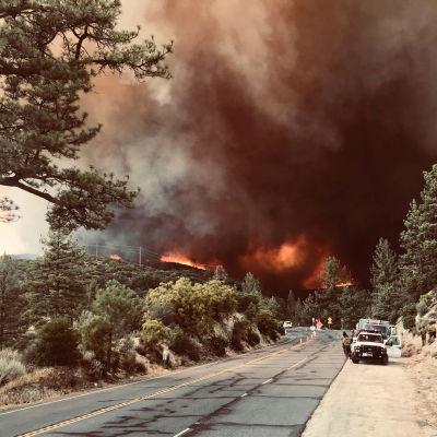 Bilister stannar för att titta på  branden i San Bernadino Valley i Kalifornien.
