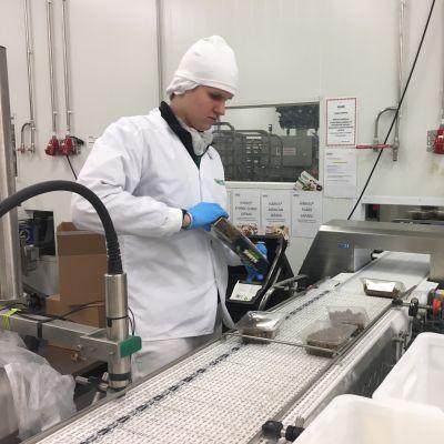 Härkis-tuotantoa Dometorilla