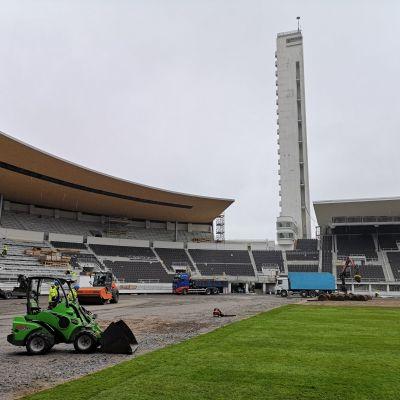 Olympiastadionilla asennetaan nurmikkoa. Yli puolet nurmikosta tehty.