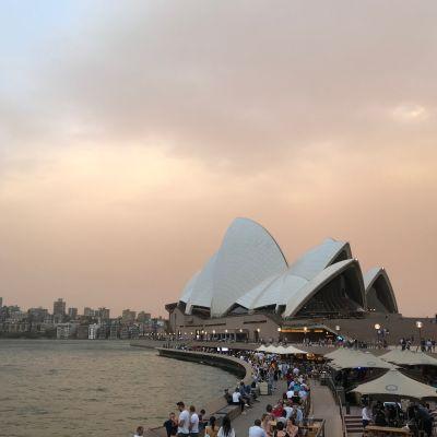 Sydney maastopalo