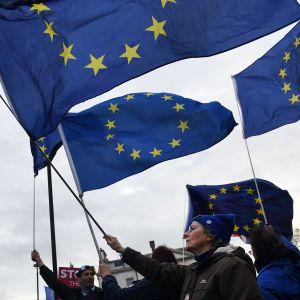 Brexitdemonstrationer mot Mays avtal.