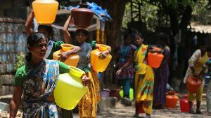 Ev värmebölja har lett till svårigheter i Bangalore, Indien