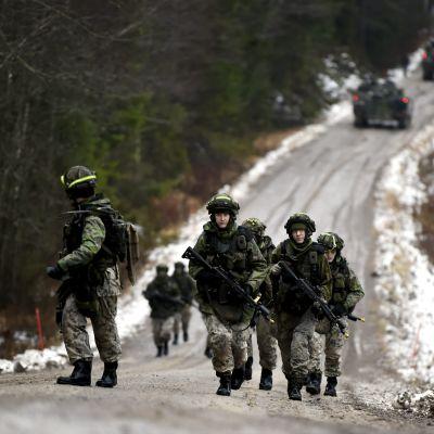 Beväringar deltar i en krigsövning i Kouvola. De bär på vapen och går upp för en backe på en landsväg med skog på båda sidorna.