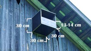 Tuulihaukan pöntön mitat