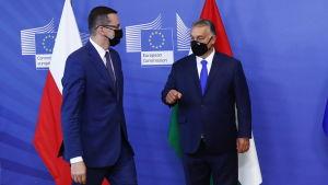 Polens premiärminister Mateusz Morawiecki med ungerska kollegan Viktor Orbán.