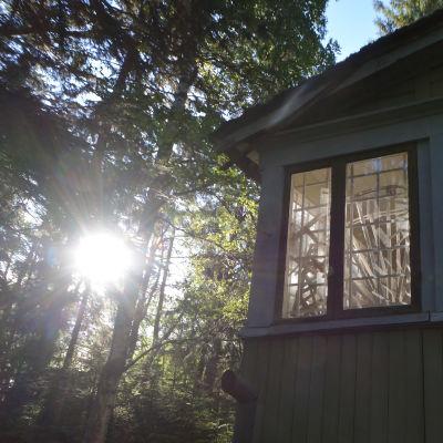 Övergiven villa i skog med soluppgång speglande i terassfönstren.