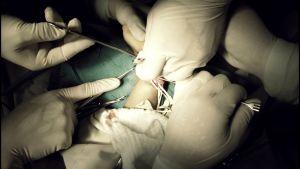 Leikkaustilanne, hanskoja