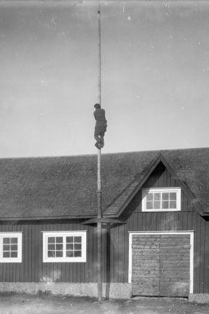 En man har klättrat upp i en flaggstång. Bilden är tagen 1931 i Närpes, Näsby.