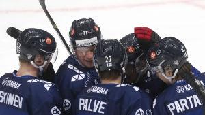 Finland firar Oula Palves mål.