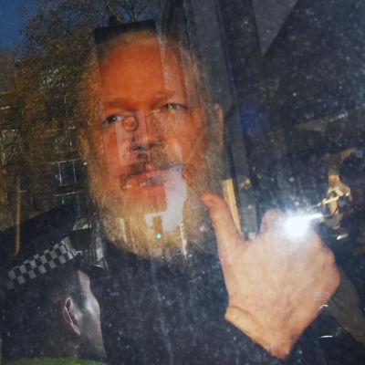 Julian Assange näyttää peukaloa auton ikkunasta.