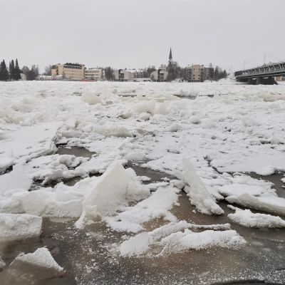 Jäät ovat pakkautuneet Rovaniemen edustalle