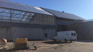 Fiskodlingsanläggningen med växthus.