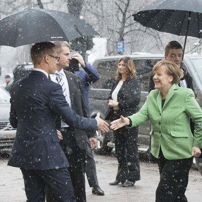 Alexander Stubb skakar hand med Angela Merkel i en bild från år 2015.