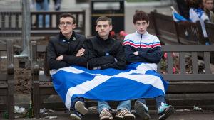 Tre förespråkare för ett självständigt Skottland med en skotsk flagga i famnen