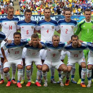 Rysslands landslag i VM 2014