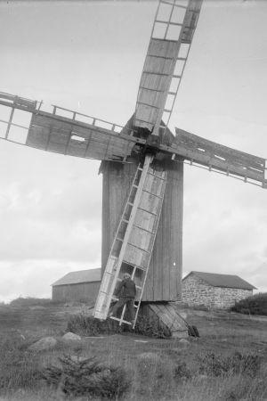 En man håller i en väderkvarns kvarnving och är redo att åka upp i luften med den. Bilden är tagen 1930 i Sund, Tranvik, Åland.