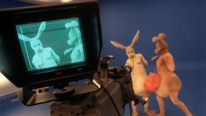 Inspelning av Den vita haren, 1998