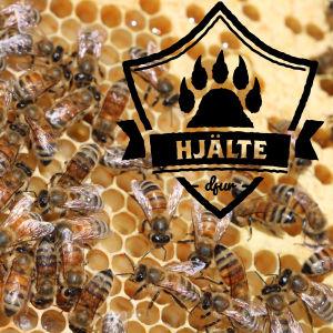 Honungsbin i en bikupa.