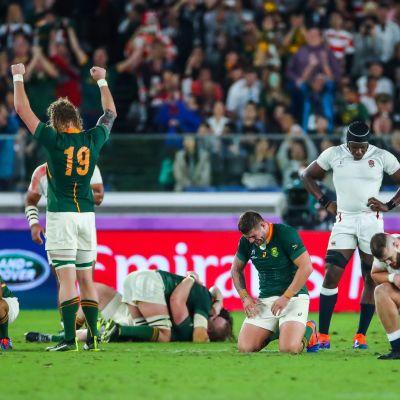 Sydafrikanska spelare jublar och engelska spelare deppar efter VM-finalen i rugby 2019.