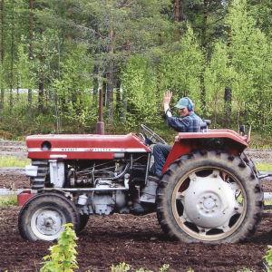 Kuvassa punainen avomallinen Massey Ferguson -merkkinen traktori pellolla. Traktori vetää perässään perunanistutuskonetta, jonka päällä istuu kaksi ihmistä perunoita laitteeseen pudottamassa.