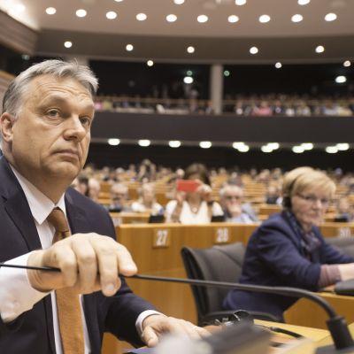 Unkarin pääministeri Viktor Orbán puhui Euroopan parlamentissa keskiviikkona 26. huhtikuuta.