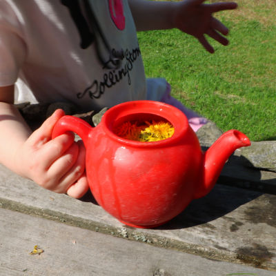 En röd leksaksvattenkanna med vatten och maskrosor i. En barnhand håller i kannan.