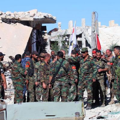 Krigare i Aleppo