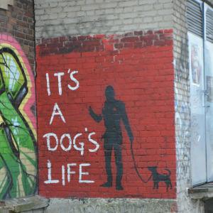 """En väggmålning med texten """"It's a dog's life""""."""