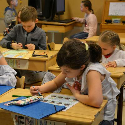 Elever sitter vid sina pulpeter. De skriver och ritar koncentrerat.