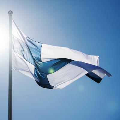 Kuvassa liehuu Suomen lippu.