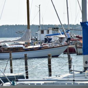 segelbåt i inlopp till småbåtshamn.