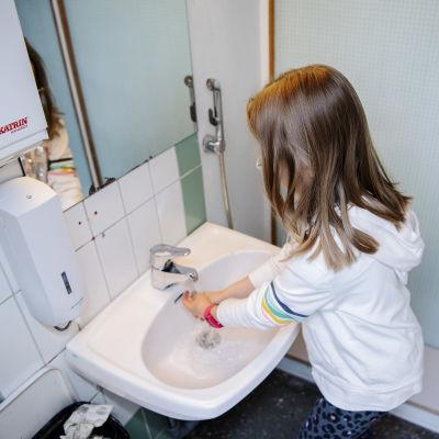 Kuvassa koululainen pesee käsiään.