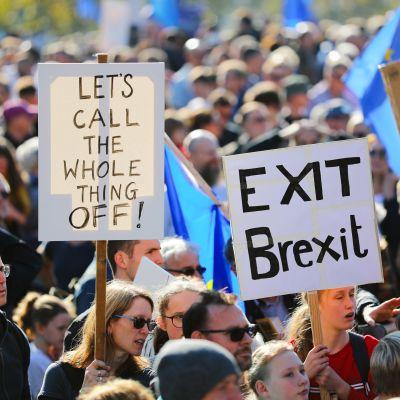 Demonstration mot brexit.