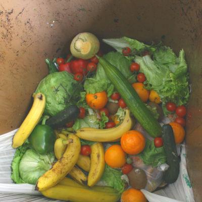 Grönsaker och frukt som har kastas i soptunnan