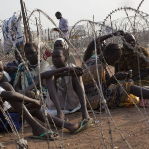 Nya blodiga strider i sodra sudan