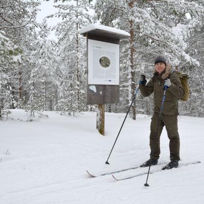 Patrik Berghäll på skidor.