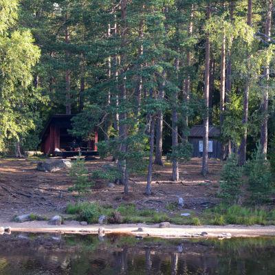 Helt åt skogen i Tykö