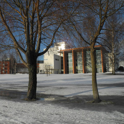 Universitetsbiblioteket i Vasa.