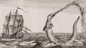Ett stort, gammalt segelfartyg med stor korsflagga seglar förbi ett långsmalt sjöodjur. Ur boken The great Sea Serpent av Christian Jochum Pontoppidan (1739-1807).