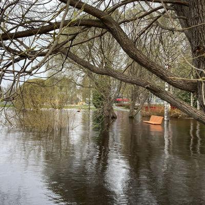 Tulvaveden saartama puupenkki Tornion Nordbergin rannassa.