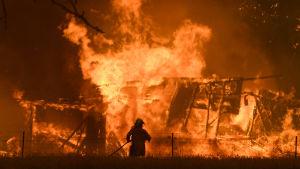 En brandman står i förgrunden, i bakgrunden brinner ett hus.