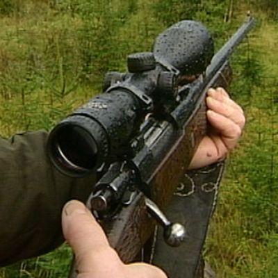 Kivääri metsästäjän käsissä. Kiväärissä kiikaritähtäin.