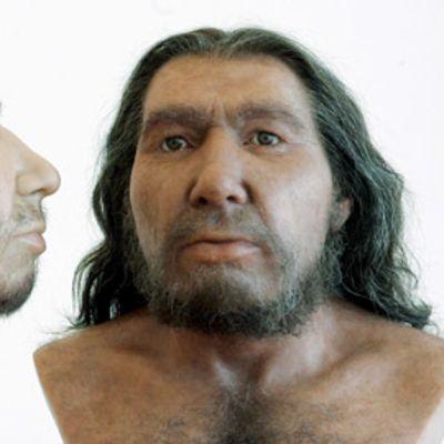 Kaksi miehen päistä tehtyä näköismallia.